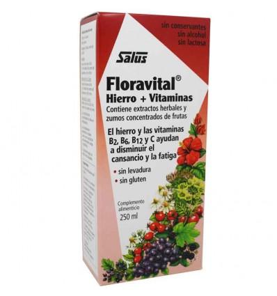 Floradix solucion 250 ml