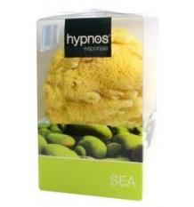 Hypnos Sponge Is