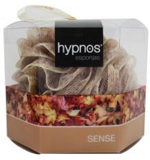 Hypnos Esponja Sense gris