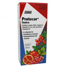 Protector 250 ml