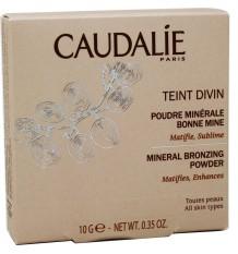 Caudalie Teint Divin Powder Effect Illuminator
