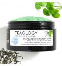 Teaology Cica Tea Perfecting Body Cream 300 ml
