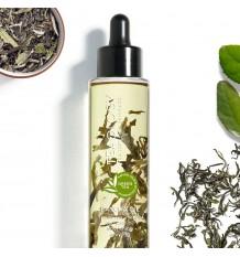Teaology Bancha-Öl 100 ml