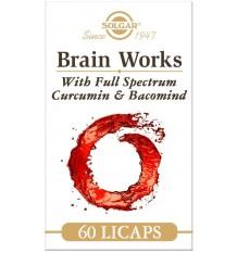 Solgar Gehirn arbeitet 60 Tabletten