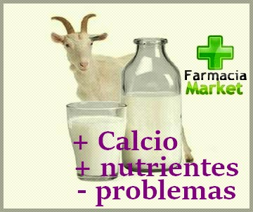 Los beneficios de la leche de cabra para tu bebé y toda la familia